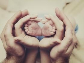 Семья и предки. Родословная