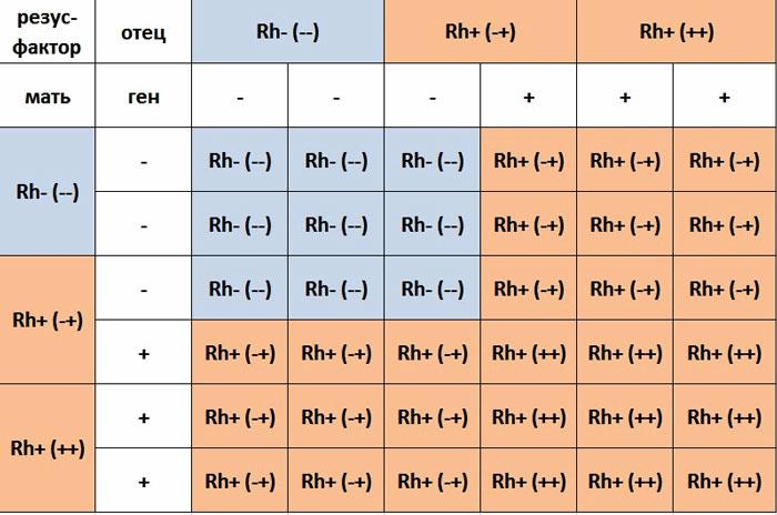Таблица резус конфликт при беременности