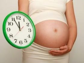Сколько длится беременность?