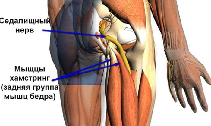 голубоглазая женщина, на голени немеет мышца половину дома