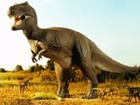 Книга про динозавров для детей