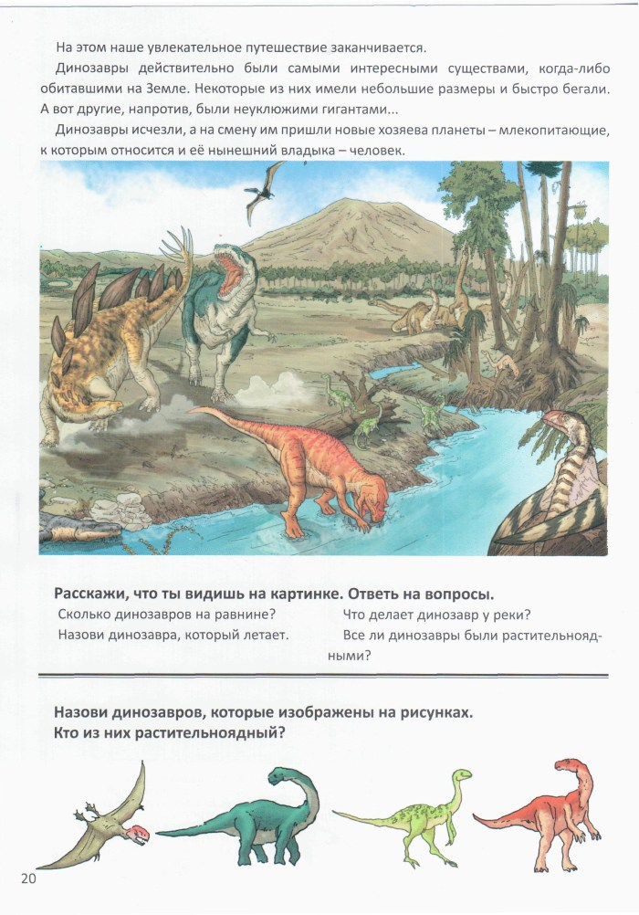 Детская книжка Динозавры 21