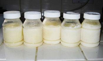 Замораживание сцеженного молока