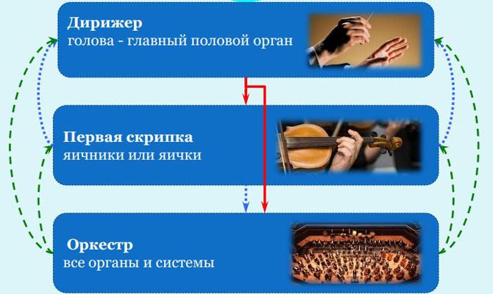 Музыкальный оркестр
