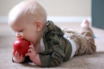 Какие фрукты давать младенцу