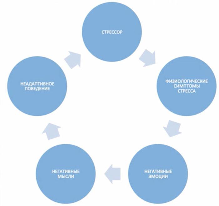 Схема развития стресса