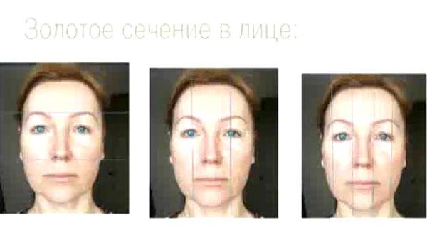 Золотое сечение для лица