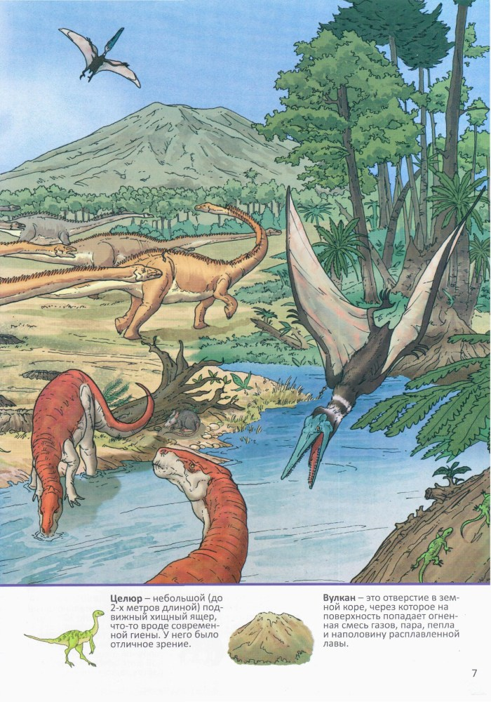 Детская книжка Динозавры 8