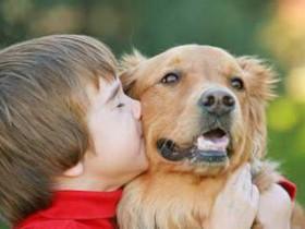 Топ-4 домашних животных, которых полезно завести детям