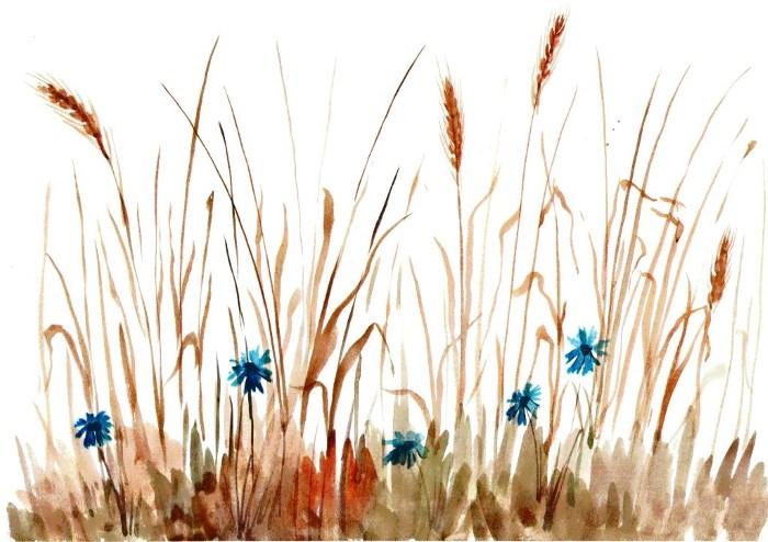 Колос в поле