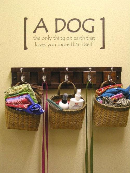 Принадлежности для собаки