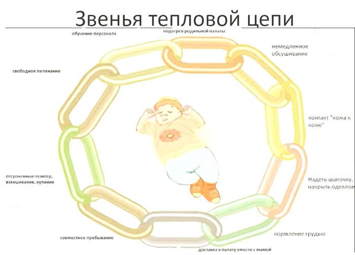Тепловая цепочка ухода за новорожденным