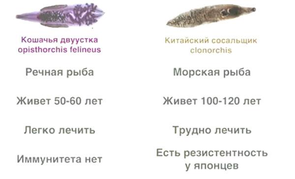 Паразиты в морской рыбе